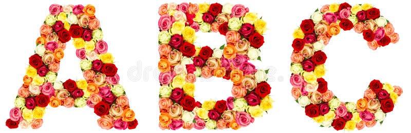 ABC, roses flower alphabet royalty free stock photos
