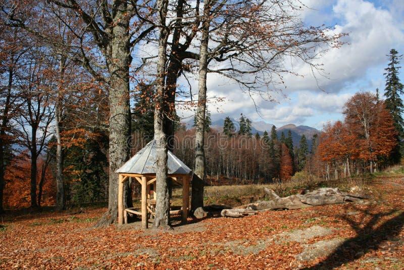 Abchazië royalty-vrije stock foto's
