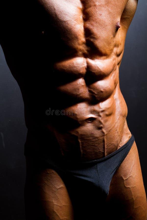 Abdômen do Bodybuilder imagens de stock royalty free