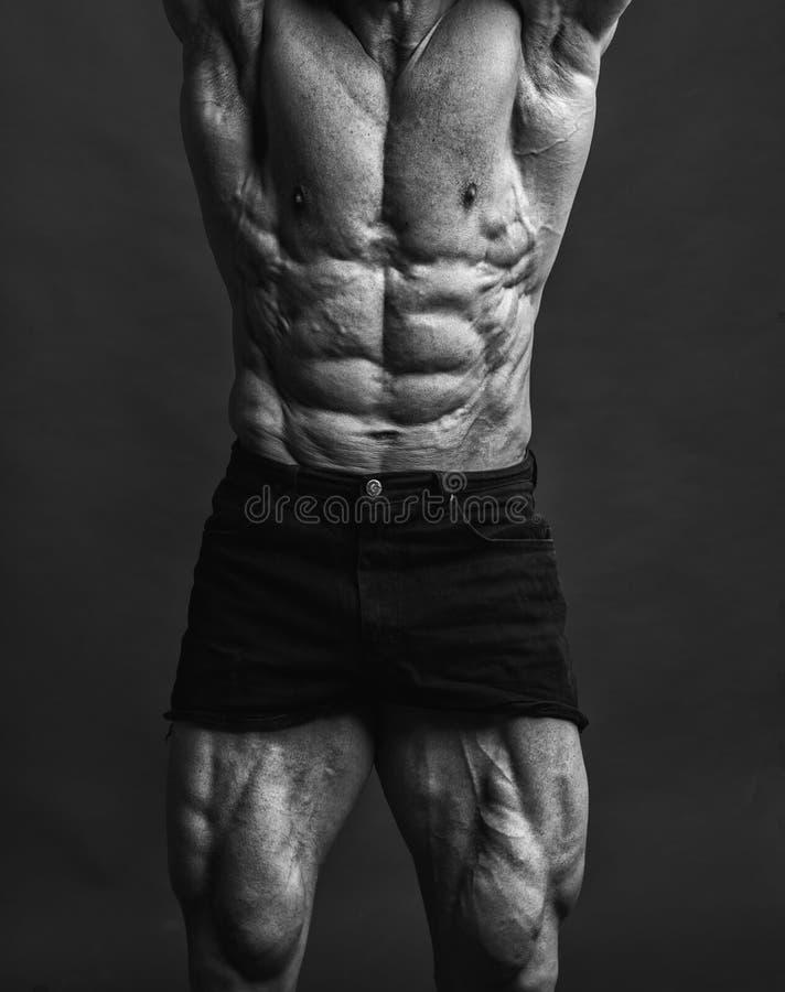 abdominals和大腿特写镜头  免版税库存图片