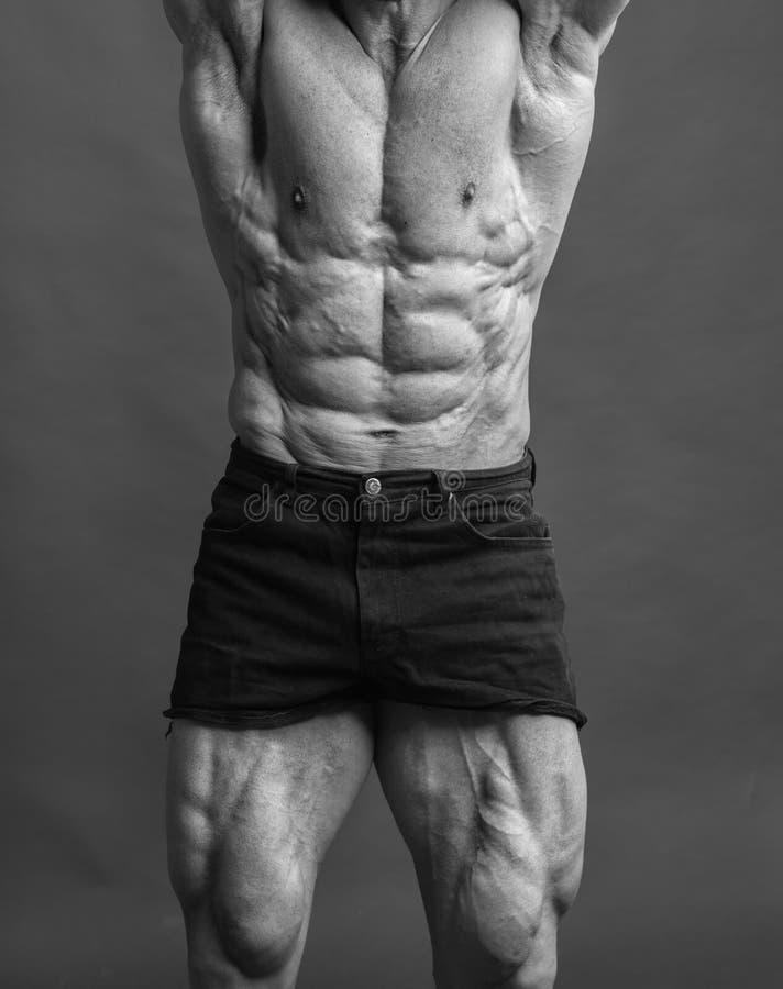 abdominals和大腿特写镜头  免版税库存照片