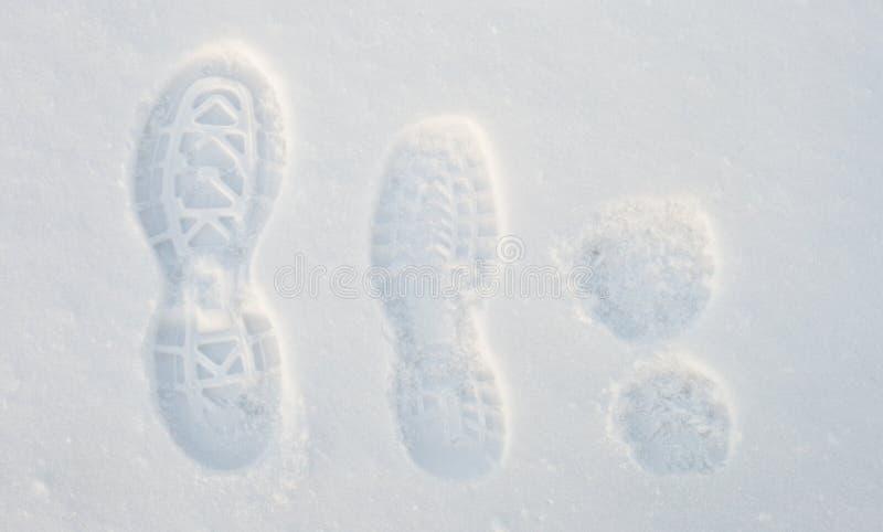 Abdrücke auf dem Schnee stockfoto