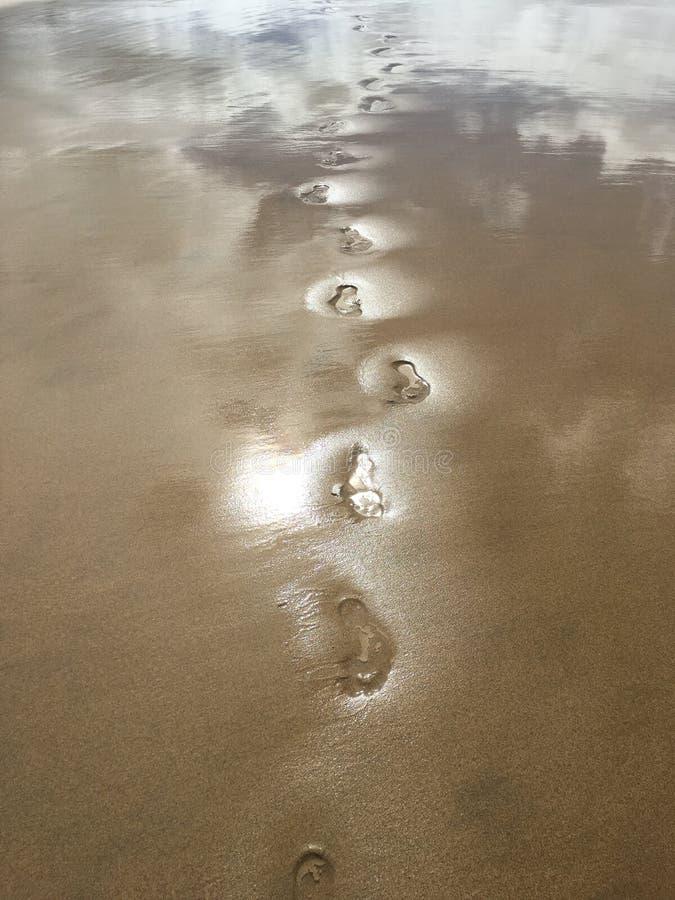 Abdrücke auf dem Strand lizenzfreies stockbild