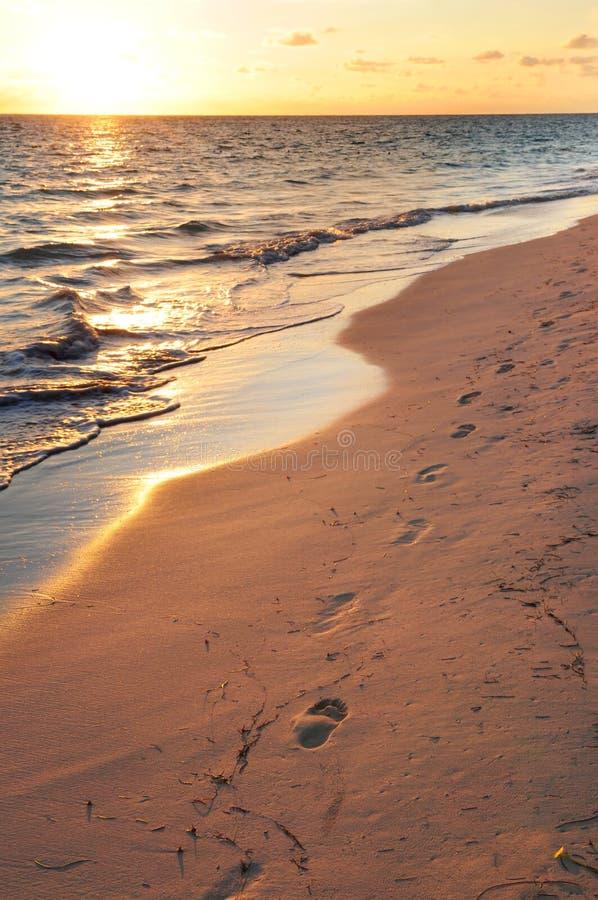 Abdrücke auf sandigem Strand am Sonnenaufgang lizenzfreie stockfotos