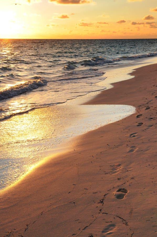 Abdrücke auf sandigem Strand am Sonnenaufgang lizenzfreies stockbild
