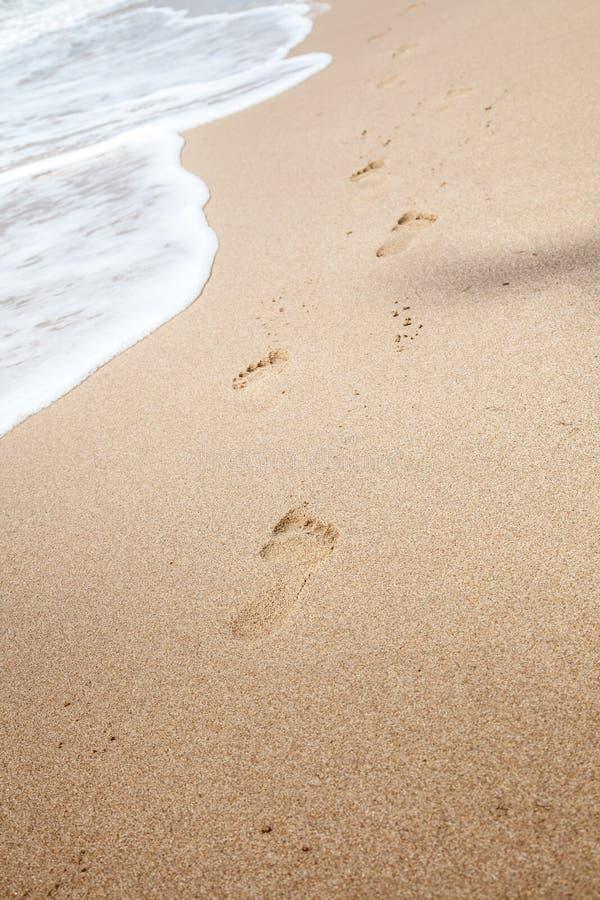 Abdrücke gelassen im Sand bei Schwarzem Meer stockfoto