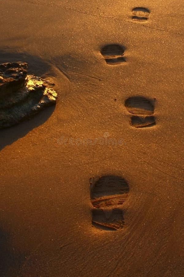 Abdrücke im Sand lizenzfreie stockfotografie