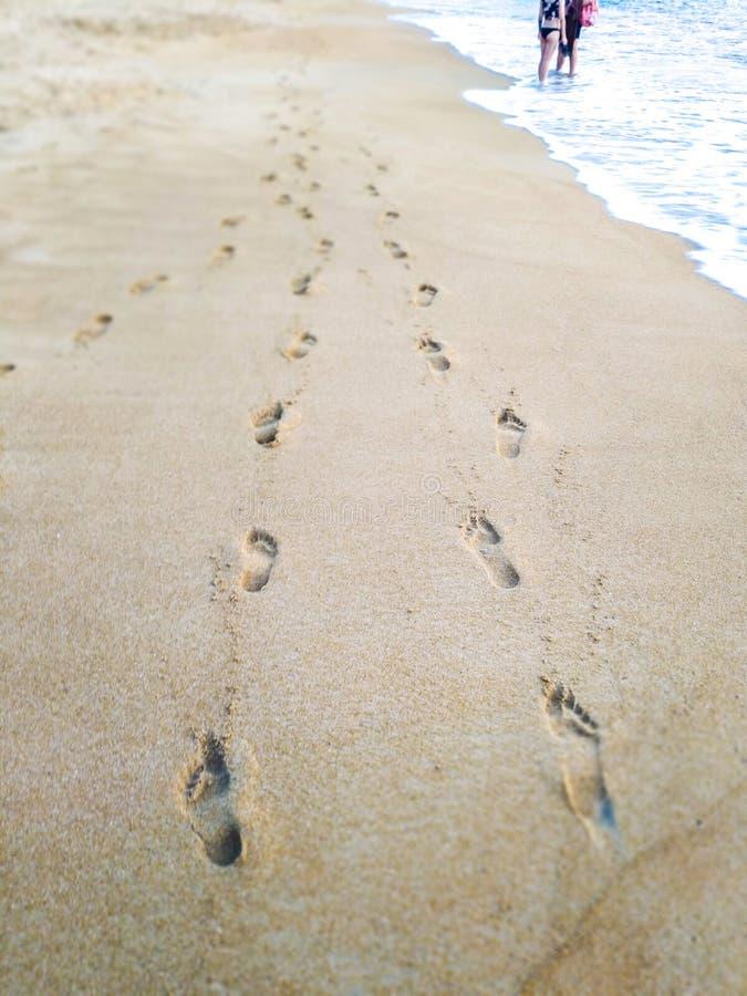 Abdrücke im Sand auf dem Strand stockbilder