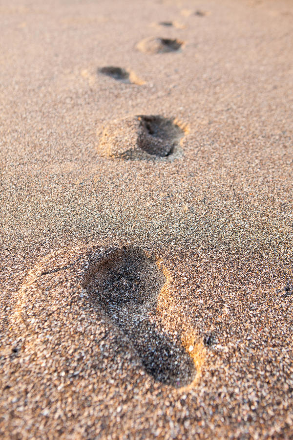 Abdrücke im Sand bei Sonnenuntergang stockbild