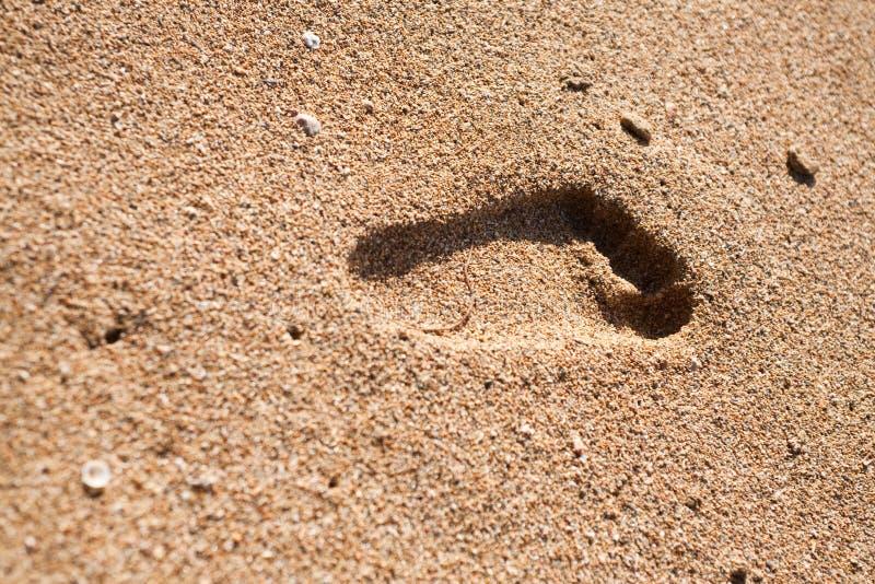 Abdruck auf Sand lizenzfreie stockbilder