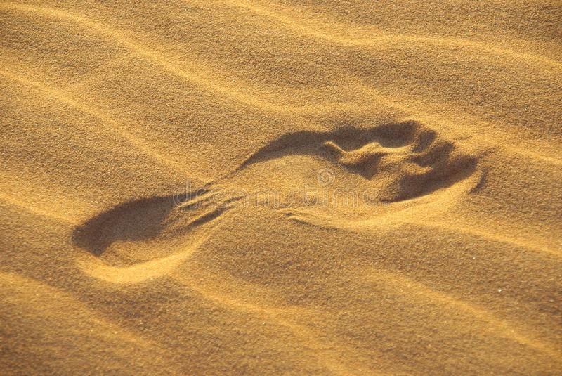 Abdruck in der Wüste stockfotografie