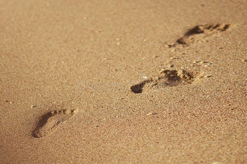 Abdruck oder Spur im Sommersandstrand oder in der Küstenlinie an den Feiertagen - Hintergrundbeschaffenheit - Draufsicht stockfotos