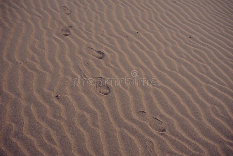 Abdruck von einsamen Leuten auf Sand an der Wüste lizenzfreies stockbild