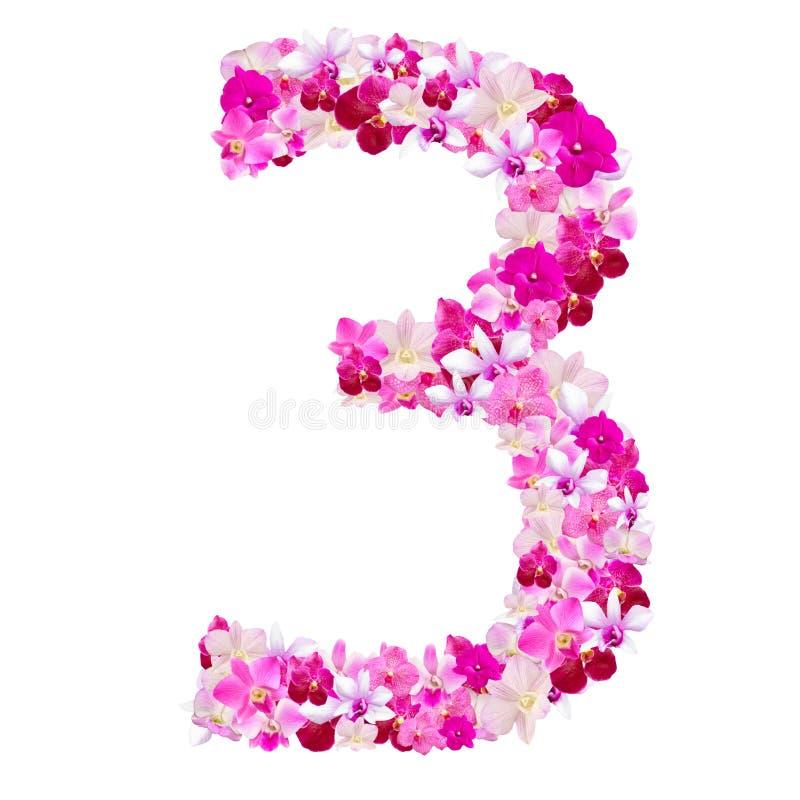 Abecadło liczba trzy od orchidea kwiatów odizolowywających na bielu fotografia royalty free