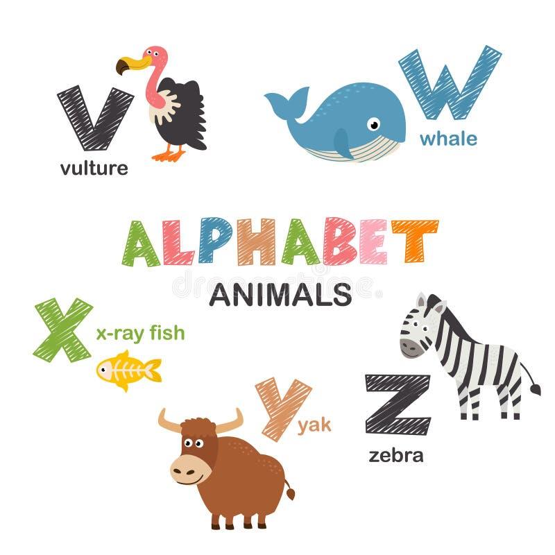 Abecadło z zwierzętami V Z royalty ilustracja