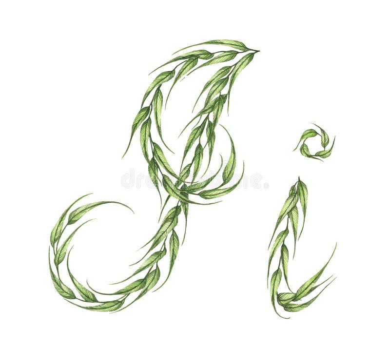 Abecadło zieleń opuszcza z listem Mnie w małym kapitale i wielkim kapitałowym liście royalty ilustracja