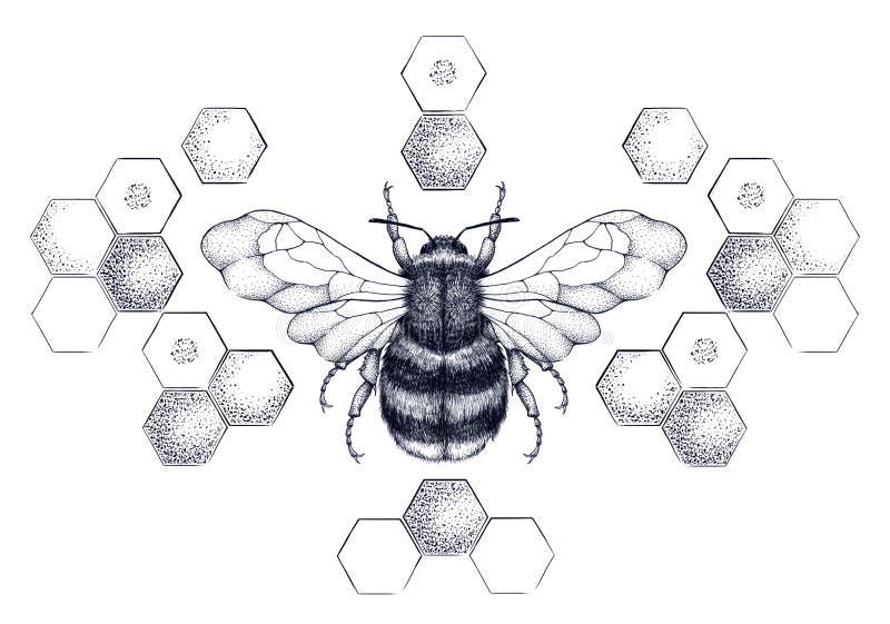 Abeille de miel entourée par le modèle des nids d'abeilles illustration libre de droits