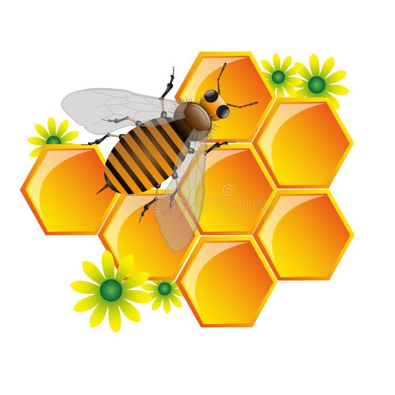 Abeille et nid d'abeilles illustration de vecteur
