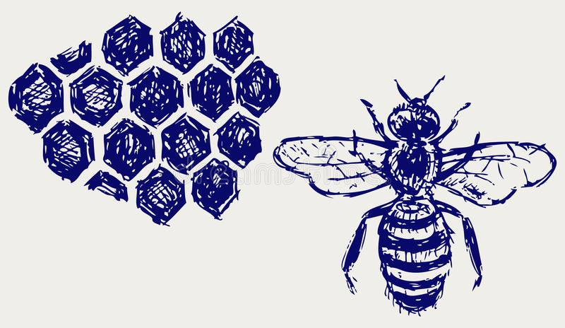 Abeille fonctionnante sur des honeycells illustration stock