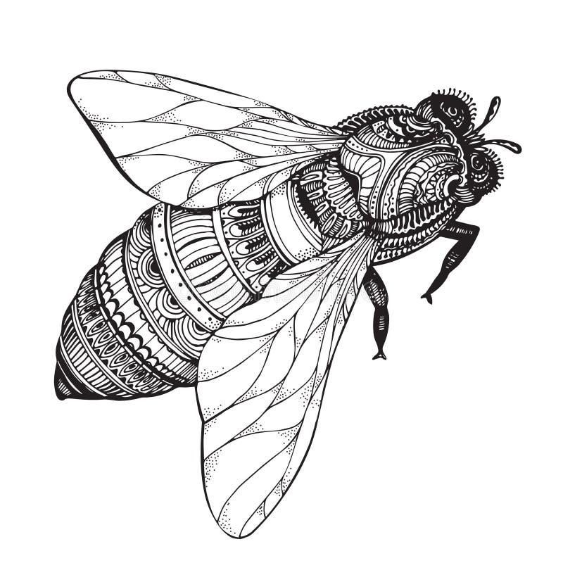 Abeille tirée par la main de miel dans le style de zentangle illustration stock