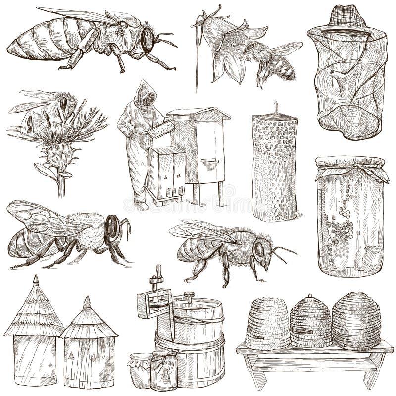 Abeilles, apiculture et miel - illustrations tirées par la main illustration stock