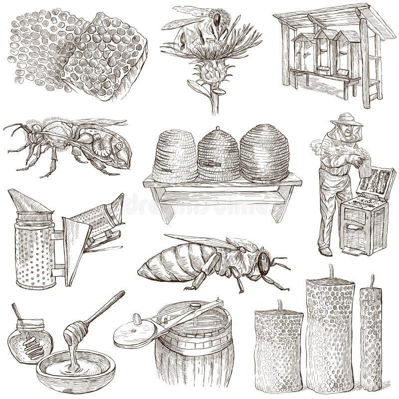 Abeilles, apiculture et miel - illustrations tirées par la main illustration de vecteur