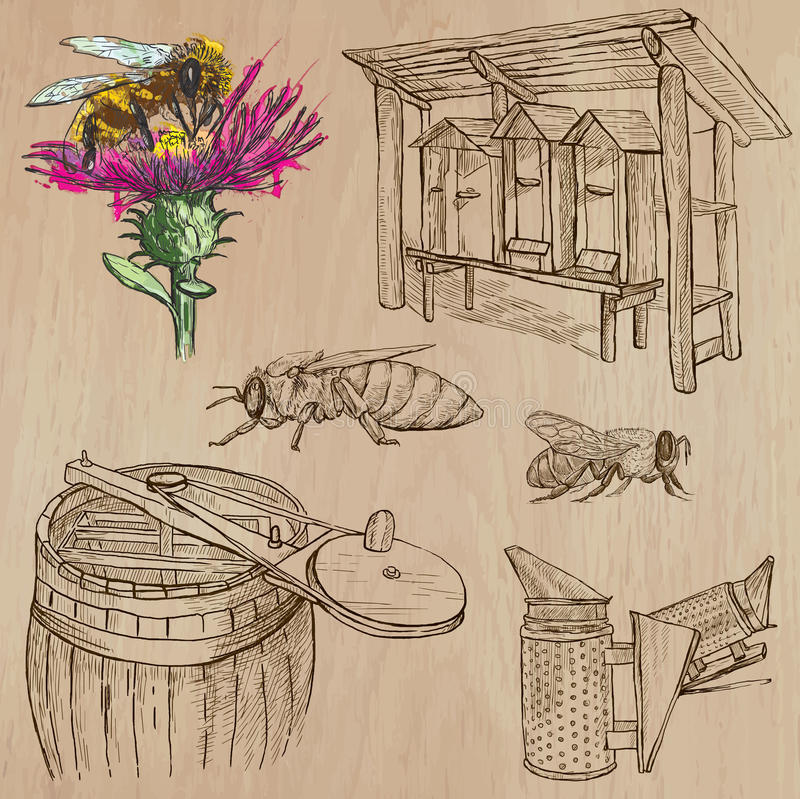 Abeilles, apiculture et miel - paquet tiré par la main 6 de vecteur illustration libre de droits