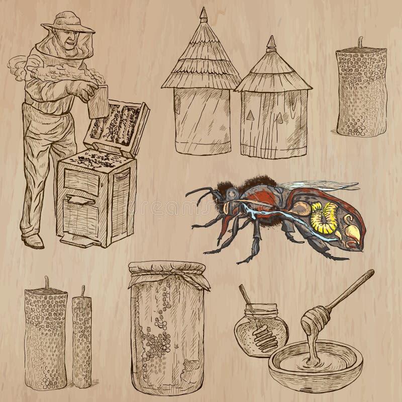 Abeilles, apiculture et miel - paquet tiré par la main 8 de vecteur illustration stock