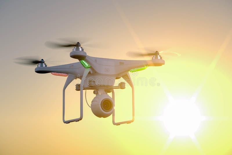 Abejón con la cámara en fondo de la puesta del sol ilustración del vector