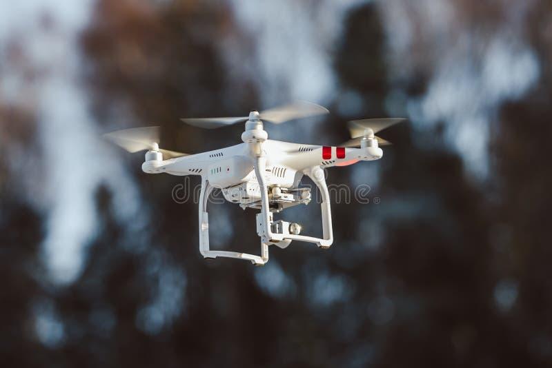 Abejón del vuelo con la cámara imagen de archivo