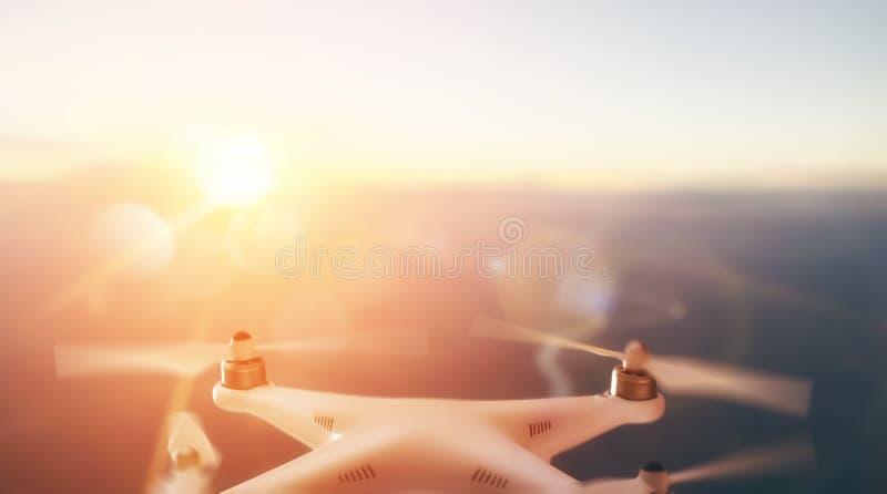 Abejón en el cielo de la puesta del sol fotografía de archivo