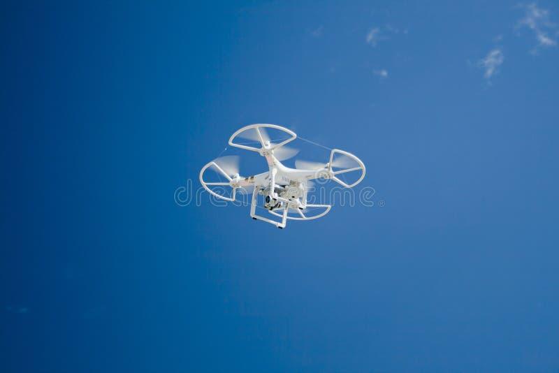 Abejón en vuelo sobre el cielo azul fotografía de archivo libre de regalías