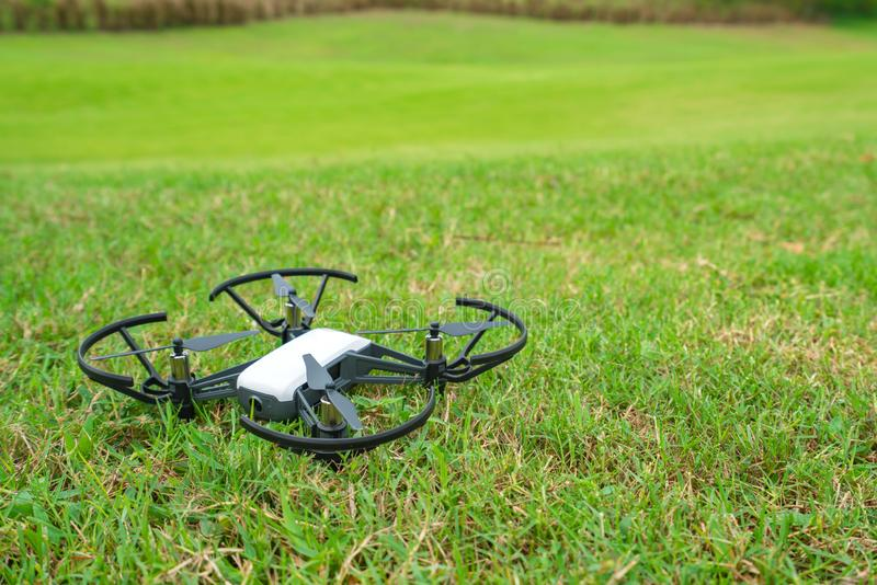 Abej?n que vuela sobre la corte del golf de la hierba verde imagenes de archivo