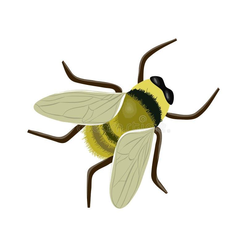 abeja stock de ilustración