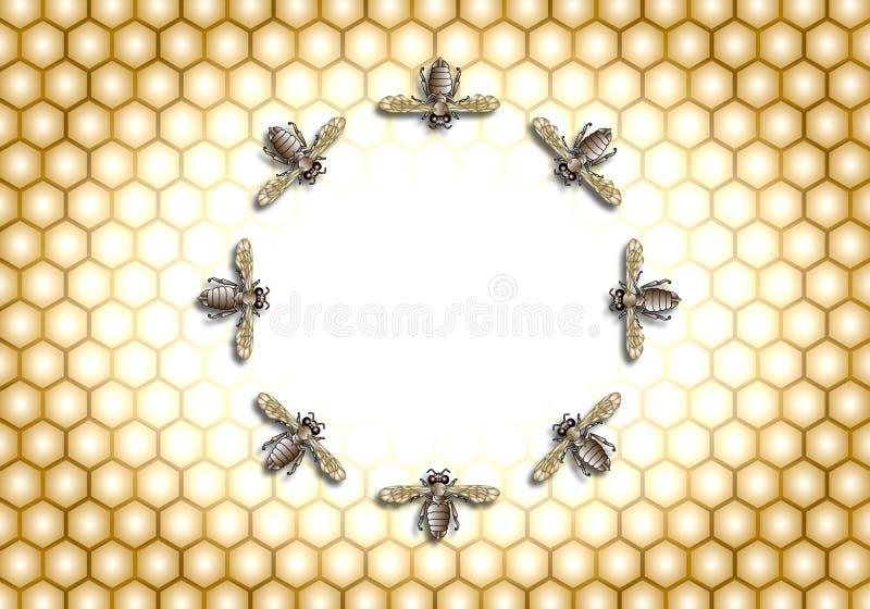 Abeja de la miel que hace la jerarquía en un círculo libre illustration
