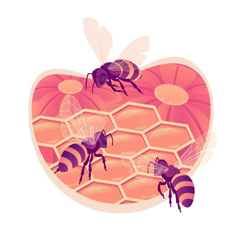 Abejas en el ejemplo isométrico aislado peine del vector Panales sellados Arrastre de las abejas en el panal ilustración del vector