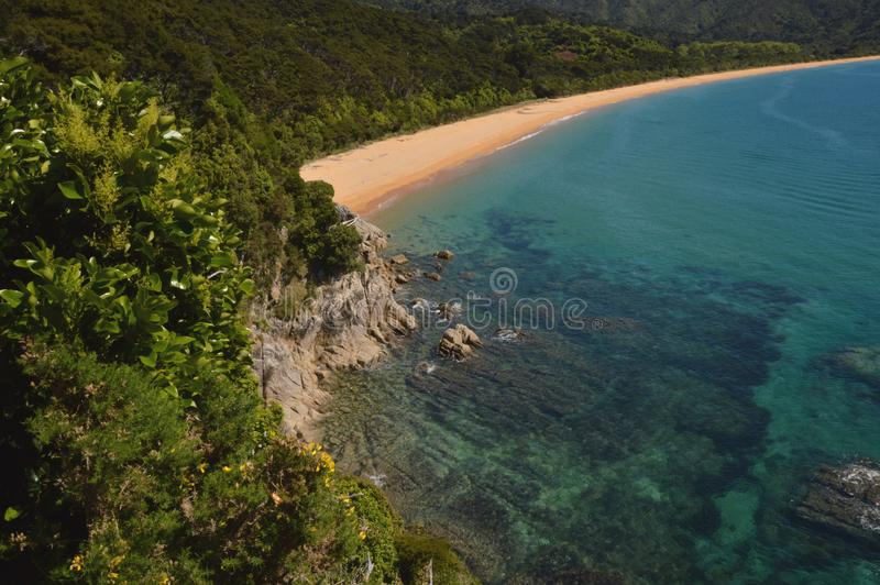 Abel tasman beach stock images