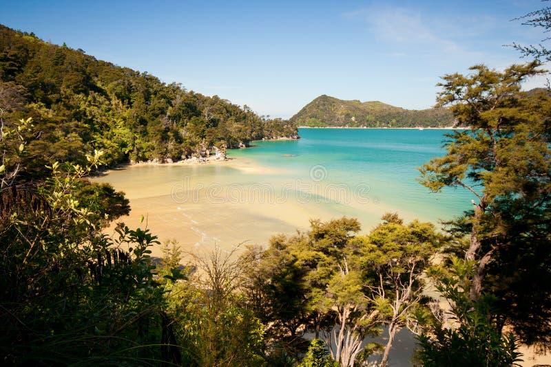 Abel Tasman park narodowy obraz royalty free