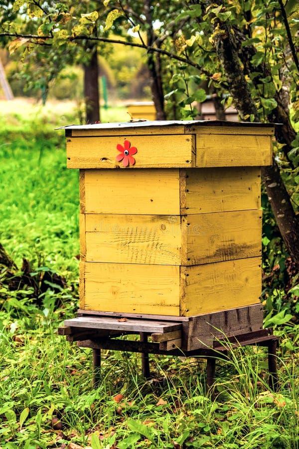Abelha de madeira velha do mel hous imagem de stock royalty free
