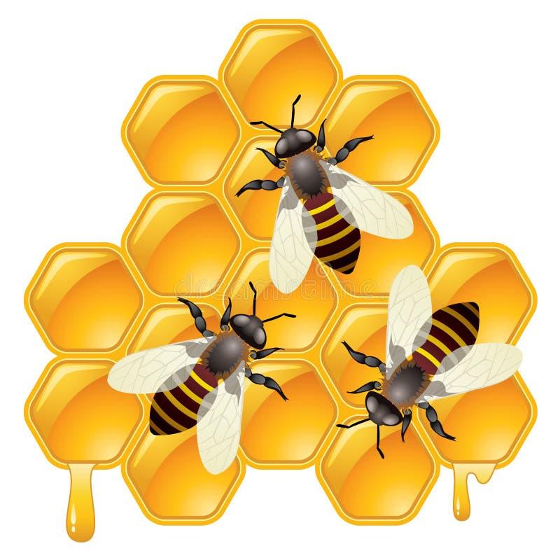 Abelhas de trabalho em honeycells ilustração stock