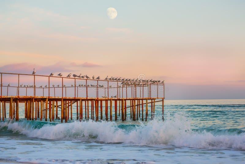 Abend auf dem Meer lizenzfreie stockfotografie