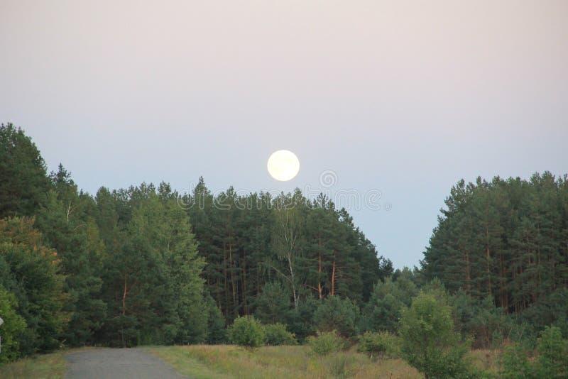 abend dämmerung Mond stockbild