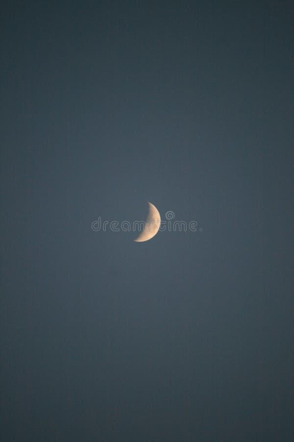 Abendlandschaftshintergrund mit Mond lizenzfreie stockbilder