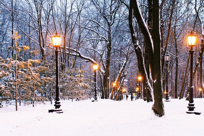 Abendpark lizenzfreies stockfoto