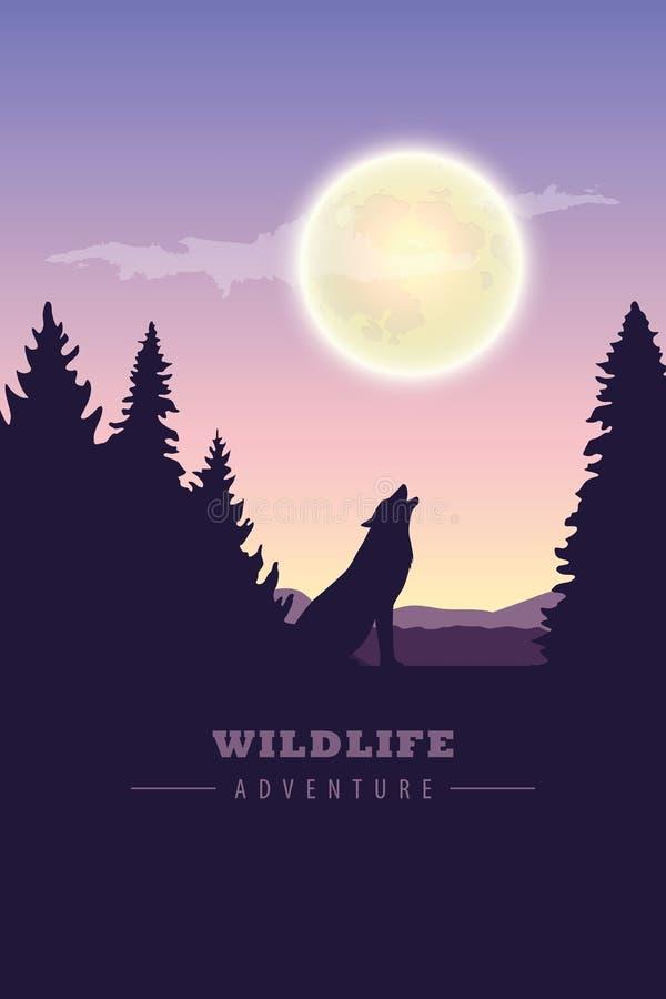 Abenteuerwolf der wild lebenden Tiere in der Wildnis heulend zum Vollmond stock abbildung