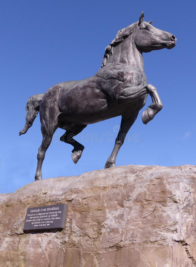 Aberaeron Welsh Cob Stallion Statue. David Mayers 2005 sculpture of a Welsh Cob stallion situated in Aberaeron. Donated to the town by the Aberaeron Festival of stock photography