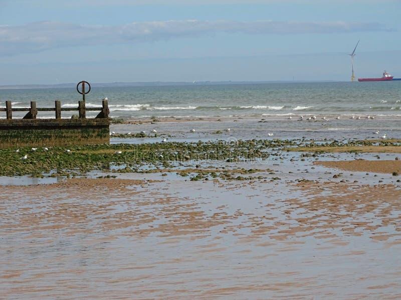 Aberdeen strand fotografering för bildbyråer