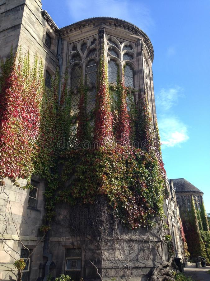 Aberdeen uniwersytet fotografia royalty free