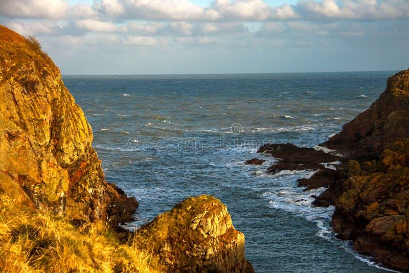 Aberdeenshire Scotland, United Kingdom. Nature Reserve. Longhaven Cliffs in Buchan, near Peterhead. Aberdeenshire, Scotland, UK royalty free stock image