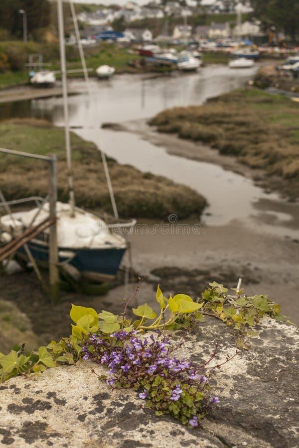 Abersoch, Gales norte, o Reino Unido - barcos imagens de stock